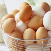 البيض (7)