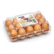 طبق بلاستك بيض سعة 15 بيضة