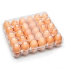 اطباق البيض البلاستيكية